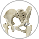 Minimally Invasive  Joint Replacement